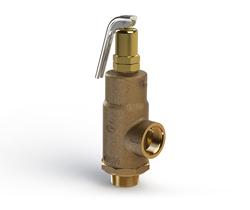 G100 relief valve